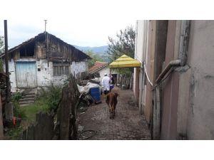 Gölcük'te şarbon karantinasına alınan köyde aşılama başlatıldı