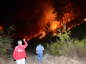 Manavgat'ta aynı gece 5 ayrı orman yangını