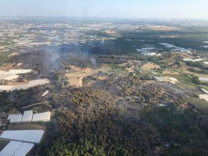 Antalya'daki orman yangınıyla ilgili açıklama