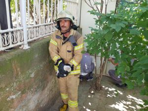 İstinat duvarı arasında bulunan boruya sıkışan kedi böyle kurtarıldı