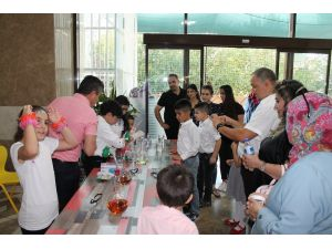 Pekfen'de yaz okulu sona erdi