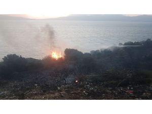 Bandırma'da makilik alanda yangın