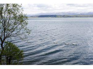 Sapanca Gölü'nün Seviyesi İyi Durumda