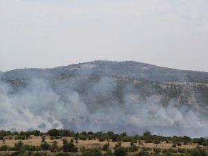 Ezine'deki Yangın Korkuttu