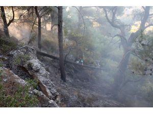 Çam Ormanında Çıkan Yangın Büyümeden Söndürüldü