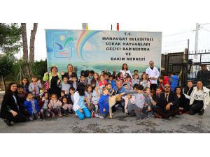 Manavgat Hayvan Barınağı'nda Etkinlik