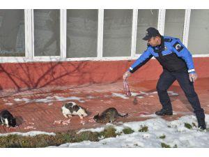 Polis Ve Öğrenciler, Sokak Hayvanları İçin Doğaya Yem Bıraktı