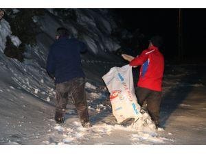 Yaban Hayvanları İçin Gece Dağlara Ekmek Bıraktı
