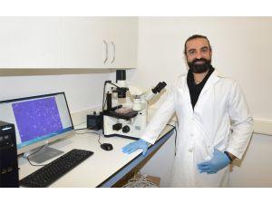 Kanserli Hücreler 3 Boyutlu Görüntülenebilecek