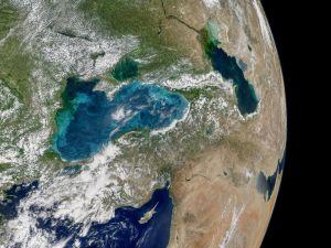 Karadeniz'de Turkuaz Akıntıları