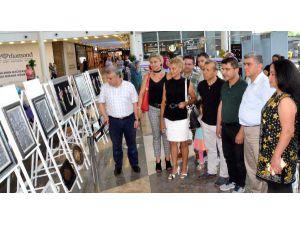 Avm'de Ev Aksesuarları Sergisi