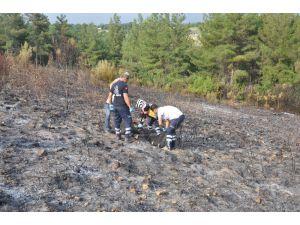 Osmaniye'de Çıkan Orman Yangınında Bir Kişi Yanarak Öldü