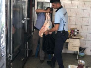 Tarsus'ta 113 Kilo Sahte Mühürlü Et Ele Geçirildi