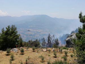 Mersin'de 10 Hektarlık Kızılçam Ormanı Yandı