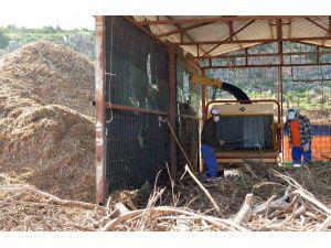 Dal Atıkları Kompost Gübre Oluyor
