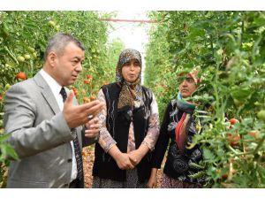 19 Bin 630 Kadın Üreticiye Eğitim
