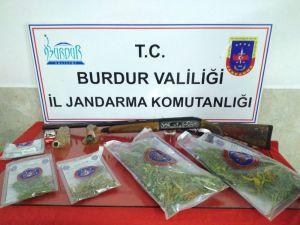 Burdur'da Kaçak Kenevir Ekimi Yapan 2 Kişi Yakalandı