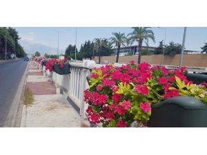 Büyükşehir, Kenti Çiçeklerle Donattı
