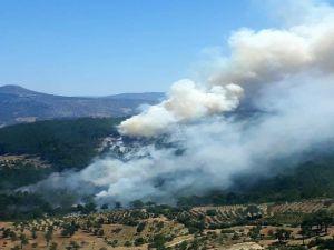 Mersin'de Bir Orman Yangını Daha