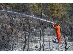 Serik'te Orman Yangını