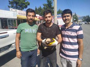 Tarlada Çalışan İşçilerin Bulduğu Yaralı Delice Kuşu Dkmp'ye Teslim Edildi