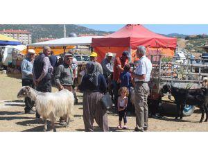 Bucak'ta Kurban Bayramı Hazırlıkları