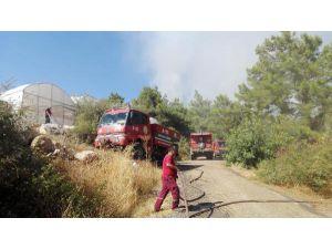 Kumluca'da Orman Yangını (2)