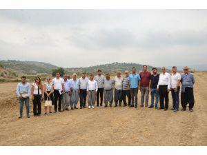 Tarsus'ta İlk Kez İncir Şenliği Düzenlenecek
