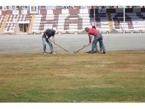 Antakya Atatürk Stadı'nda Çimler Seriliyor