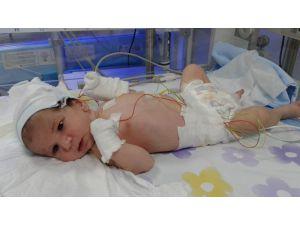 Asel Bebek İçin 'Yaşatın' Çığlığı