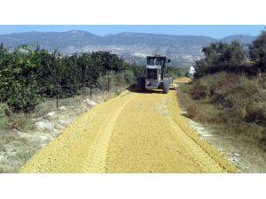 Akdeniz Belediyesi, Üreticiler İçin Yeni Tarım Yolları Açıyor