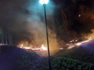 Adana'da Tarihi Kozan Kalesi Eteklerinde Yangın