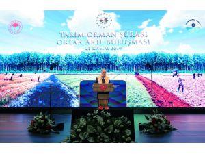 """Cumhurbaşkanı Erdoğan: """"Gıda Güvenliği Milli Güvenlik Meselesi Haline Geldi"""""""