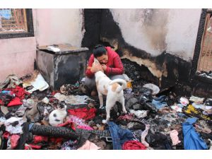 Evleri Yanınca 15 Kedi Ve 2 Köpeğiyle Evsiz Kaldı