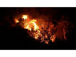 Samandağ'da Tarihi Mağaralara Yakın Yerde Çıkan Yangın Kontrol Altına Alındı