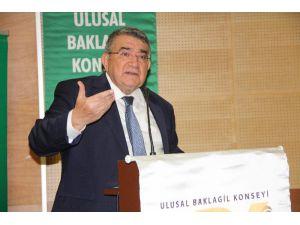"""Baklagil Konseyi Başkanı Özdemir: """"Baklagil Ürünlerine Pozitif Ayrımcılık İstiyoruz"""""""