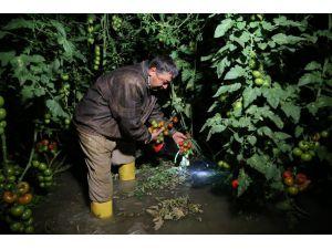 Antalya'da seradaki ürünleri su altında kalan üreticilerin zor anları