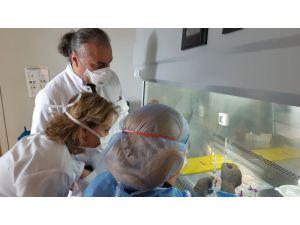 Gen Tedavileri Hemofili Hastalarına Da Umut Vaat Ediyor