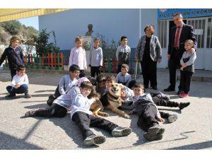 Alanya'da engelli köpek 'Şirin' öğrencilerin ilgi odağı oldu