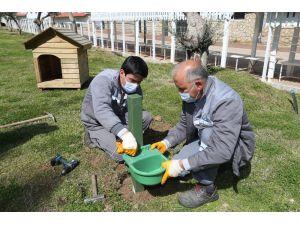 Kepez'de mama ve su kabı sayısı artırıldı