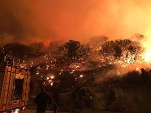 Antalya'nın Kaş ilçesinde orman yangını (1)