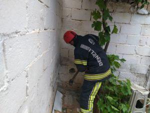 Duvar Arasında Kalan Yavru Kedi İçin İtfaiye Seferber Oldu