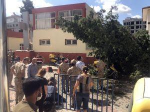 Kesilen Ağaç Postacının Üzerine Düştü