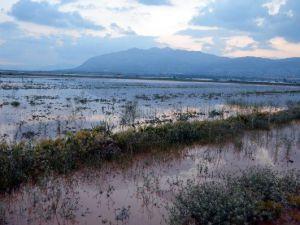 Elmalı'da dolu ve yağmur sele neden oldu