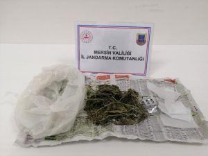 Silifke'de Uyuşturucu Kullanan 1 Kişi Yakalandı