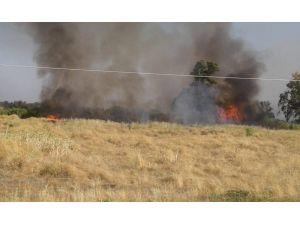 Hatay'da Çiftlik Yangını