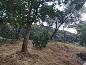Ankara'da Sit Alanında Yangın