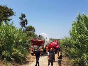 Manavgat'ta çalılık yangını