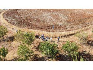 Koyun Otlattıkları Dağları Badem Bahçesine Çevirdiler