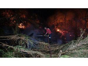 Mersin'de Araştırma Enstitüsü Bahçesinde 3 Ayrı Noktada Yangın Çıktı